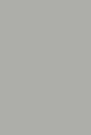 Сталь глянец MCM0026003g